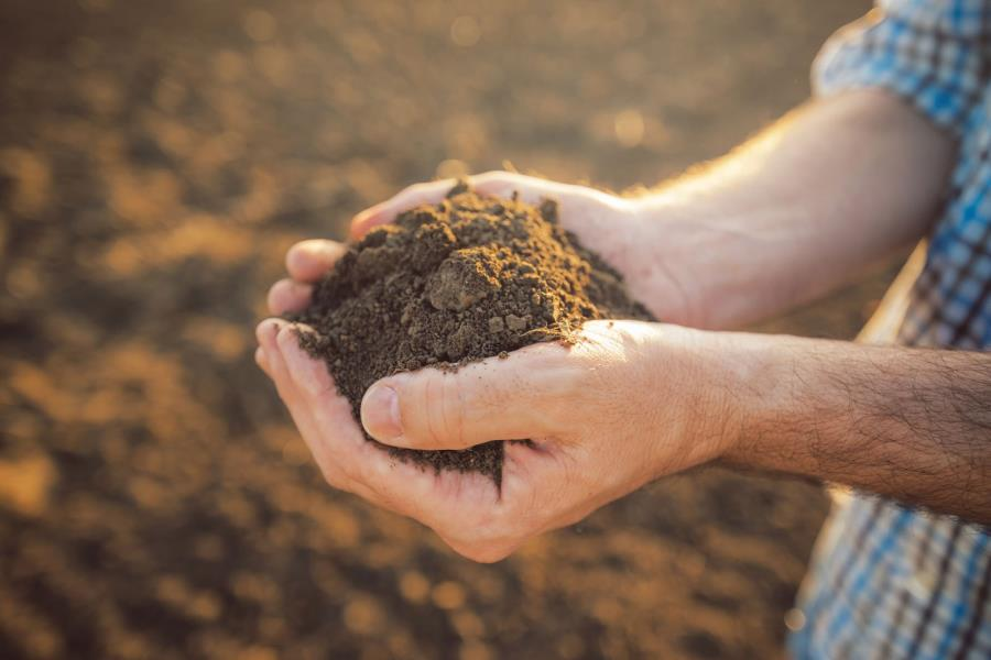 Zen and the Art of Composting